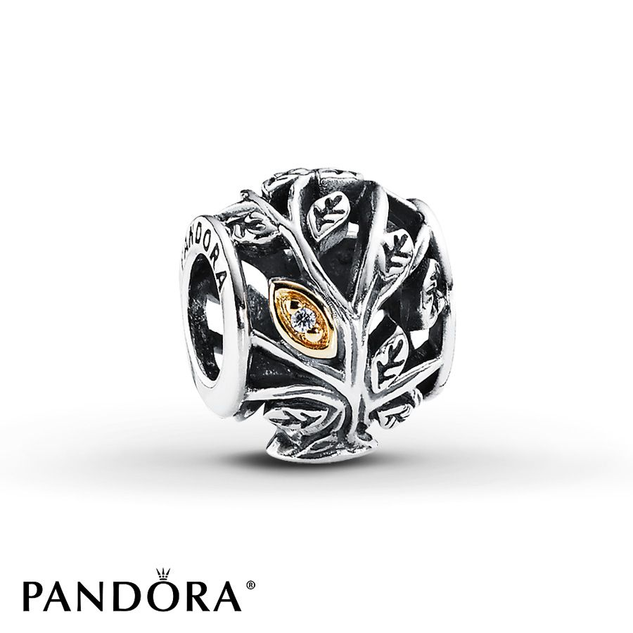 jared pandora charms